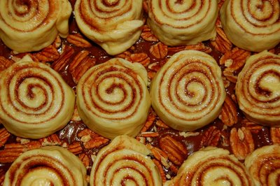 pecan-honey-sticky-buns1